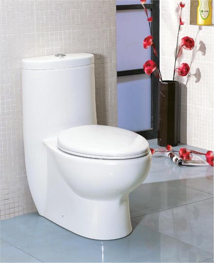 Who says a toilet can't be beautiful?